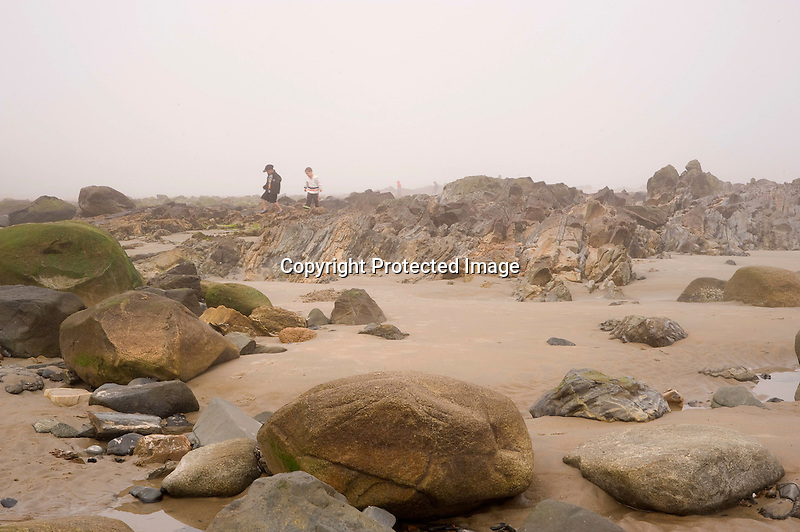 Young Boys Exploring Foggy Beach in Wells, Maine
