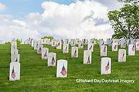 65095-02619 Gravestones at Jefferson Barracks National Cemetery St. Louis, MO