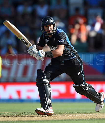 08.03.2015. Napier, New Zealand.  Ross Taylor batting during the ICC Cricket World Cup match between New Zealand and Afghanistan at McLean Park in Napier, New Zealand. Sunday 8 March 2015.