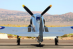 Owned by Sander's Aviation, and piloted during the 2008 Reno National Championship Air Races by CJ Stephens, the Hawker Sea Fury 'Argonaut' sits on the ramp prior to a heat race. During Friday's heat race Argonaut's R3350 motor suffered a catostrophic failure forcing Stephens to mayday and expertly pilot the aircraft to an emergency landing while streaming flames and smoke.