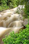 The Winter runoff peaks on fish Creek in June.