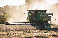 63801-07407 Soybean harvest with John Deere combine in Marion Co. IL