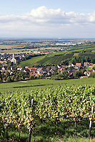 Germany, Baden-Wuerttemberg, Markgraefler Land, wine village Auggen, overview