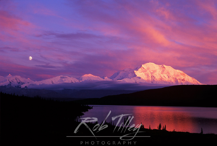 Alpenglow on Mt. McKinley, Denali NP, Alaska, USA