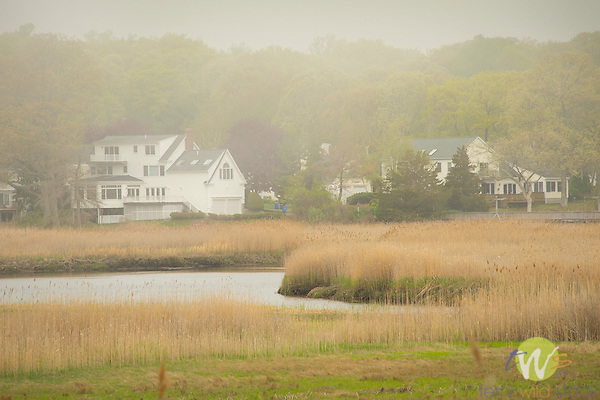 Wetlands with homes and fog.