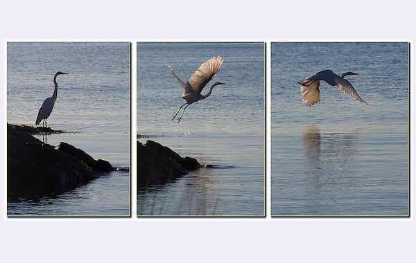 Photoshop has made photography so much more fun!<br />