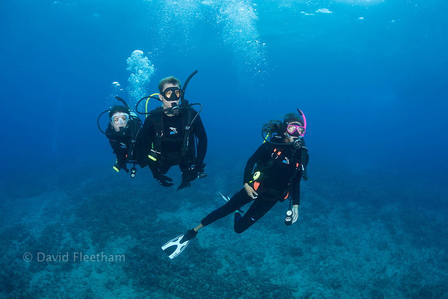 Three divers (MR) pictured cruising over a reef off the island of Maui, Hawaii.