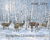 Dona Gelsinger, CHRISTMAS ANIMALS, WEIHNACHTEN TIERE, NAVIDAD ANIMALES, paintings+++++,USGE1409,#xa# ,deer,deers,