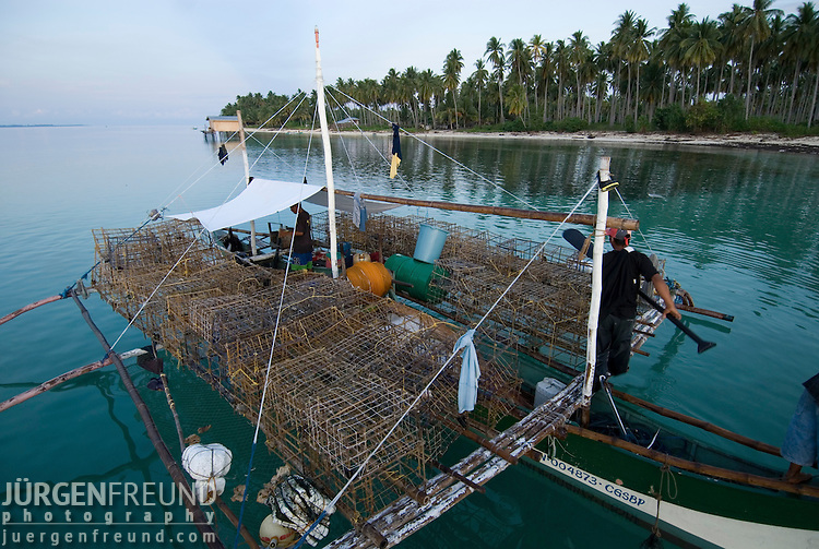 Large scale nautilus hunters.  These fishermen load their boats with 150 bamboo traps and stay out at sea for a week. They can catch from 400 to 800 nautilus in a week.  The nautilus of the Sulu Seas has almost been wiped out and these fishermen have moved on to new areas in the South China Sea.