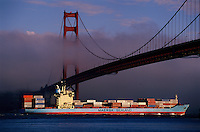 A container ship passes under the Golden Gate Bridge in San Francisco Bay, THE most <br /> impacted ecosystem in the world. Ballast water moved from port to port also spreads human pathogens--there is evidence that cholera bacteria that returned to Peru in 199 was the first outbreak in the Western Hemisphere in a century. It was brought by ships from Asia in ballast water. <br /> Since 1970, on average, one new species has been introduced every 24 weeks into the bay <br /> and surrounding estuaries. According to Dr. Andrew Cohen of the San Francisco Bay Estuary Institute, the bay has over 240 invasive species. Dr Cohen sounded the alarm about the increasing impact of foreign species beginning with the Chinese mitten crab and European green crab. The mitten crab is responsible for horrific erosion problems while the green crab out competes the native Dungeness crab for resources. <br /> Most of the fish found in the Bay's delta are non-native. All of these non-indigenous species <br /> have had a profound impact on the ecology of San Francisco Bay.
