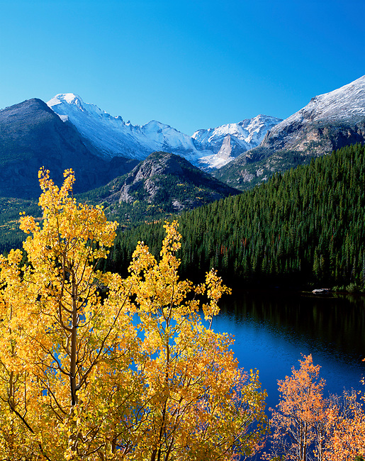 autumn, fall, aspen trees, evergreen trees, Bear Lake, Rocky Mountain National Park, Colorado, Longs Peak