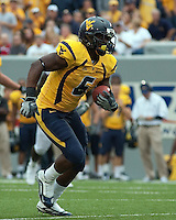 WVU full back/tight end Will Johnson. The WVU Mountaineers defeated the East Carolina Pirates 35-20 at Mountaineer Field at Milan Puskar Stadium, Morgantown, West Virginia on September 12, 2009.