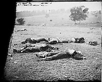 "Field where General Reynolds Fell"" in Alexander Gardner's<br /> Photograph from the main eastern theater of the war, Gettysburg, June-July, 1863."