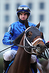 January 24, 2020: Shared Sense with jockey Florent Geroux aboard during the Smarty Jones Stakes at Oaklawn Racing Casino Resort in Hot Springs, Arkansas on January 24, 2020. Justin Manning/Eclipse Sportswire/CSM