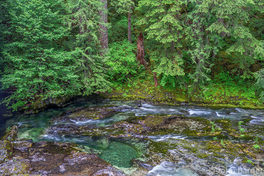 ORCAN_D131 - USA, Oregon, Willamette National Forest, Opal Creek Scenic Recreation Area, Little North Santiam River with surrounding lush coniferous forest in spring.