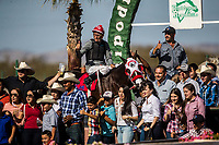 Horse racing at the Hip&oacute;dromo de Hermosillo. 21may02017<br />