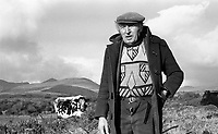 Direendraugh, Blackwater, Sneem, County Kerry Ireland 1992:   Farmer Jerome O&rsquo;Leary poses with his cow known as  'Big Bertha', a 48 years old Droimeann cow who appeared in the Guinness Book of Records as the world's oldest cow. In this photograph she was pregnant with her record breaking 39 calf born soon afterwards.<br /> Big Bertha died on New Year's Eve 1993.<br /> Photo: Don MacMonagle <br /> e: info@macmonagle.com