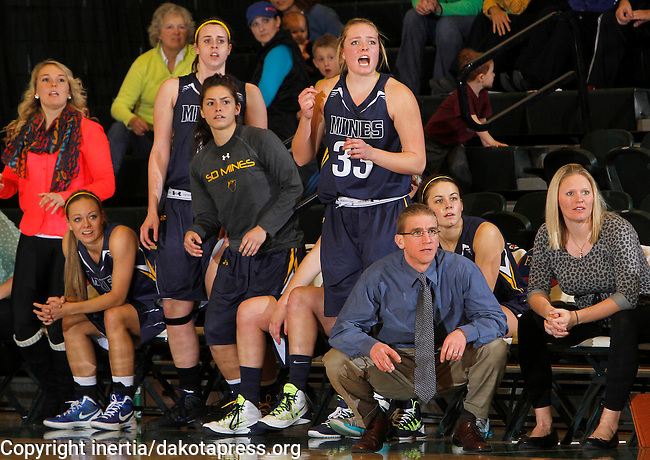 SPEARFISH, S.D. -- NOVEMBER 26, 2013 -- South Dakota Mines head women's basketball coach Ryan Larsen and the bench react as they close the gap on Black Hills State during their game Tuesday evening at the Donald E. Young Center in Spearfish, S.D.  (Photo by Dick Carlson/Inertia)