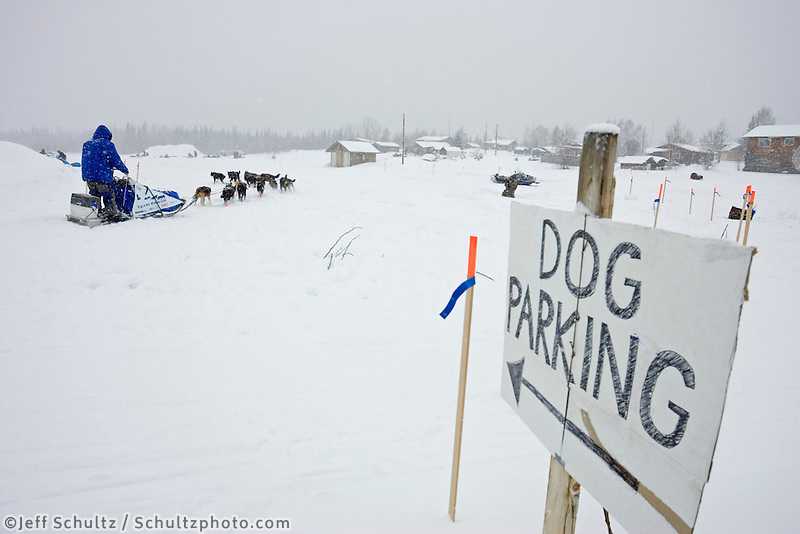 John Bakers sled dog team arrives @ Nikolai Chkpt in snowstorm 2006 Iditarod Alaska interior Winter