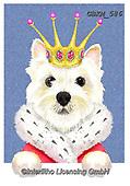 Kate, CHRISTMAS ANIMALS, WEIHNACHTEN TIERE, NAVIDAD ANIMALES,dog,dogs,king, paintings+++++Westie in crown.,GBKM586,#xa#