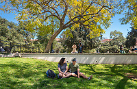 Melissa Braun '19 and Chris Rom-Toribio '18 chat under tree near the Gilman Fountain, March 28, 2018.<br /> (Photo by Marc Campos, Occidental College Photographer)