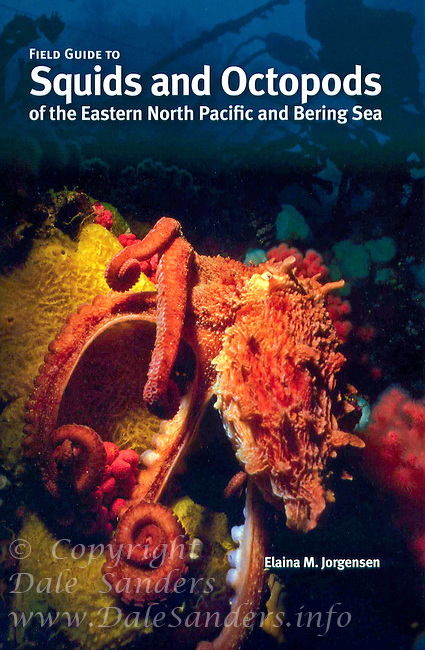 "Cover of ""Field Guide to Squids and Octopods of the Eastern North Pacific and Bering Sea"" book with an Image of a Giant Pacific Octopus."