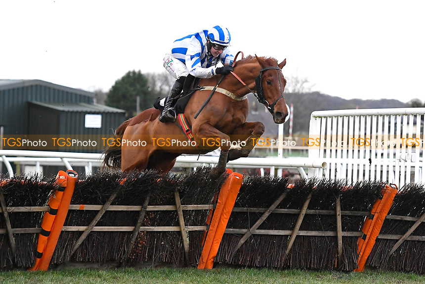 Winner of The Strong Flavours Catering Handicap Hurdle  Age of Wisdom ridden by Niall Houlihan and trained by Gary Moore  during Horse Racing at Plumpton Racecourse on 10th February 2020