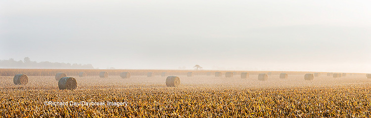 63801-06913 Hay bales from corn field early morning fog Marion Co. IL