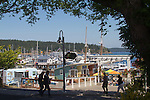 San Juan Island, Friday Harbor, San Juan Islands, Washington State, Pacific Northwest, United States, North America, USA, coastal town, waterfront, yacht harbor, summer tourist season, tourists,