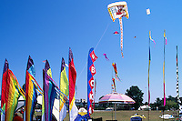 Vancouver, BC, British Columbia, Canada - Colorful / Colourful Flags and Banners at International Kite Flying Festival at Vanier Park, Summer