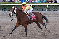 January 17, 2015: Dame Dorothy ridden by Edgar Prado wins the Sunshine Millions Distaff at Gulfstream Park. Gulfstream Park, Hallandale Beach (FL). Arron Haggart/ESW/CSM