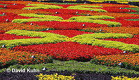 0904-0818  Coleus and Begonia Garden at Biltmore Estate © David Kuhn/Dwight Kuhn Photography.
