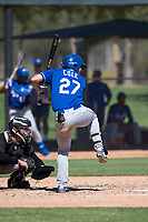 Kansas City Royals left fielder Eric Cole (27) at bat in front of catcher Evan Skoug (27) during an Instructional League game against the Chicago White Sox at Camelback Ranch on September 25, 2018 in Glendale, Arizona. (Zachary Lucy/Four Seam Images)