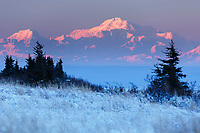 Denali (aka Mt. Mckinley) as seen at sunset from Chugach State Park. Glenn Alps area of Anchorage, Alaska   winter landscape.  alpenglow<br /> <br /> Photo by Jeff Schultz/SchultzPhoto.com  (C) 2016  ALL RIGHTS RESVERVED