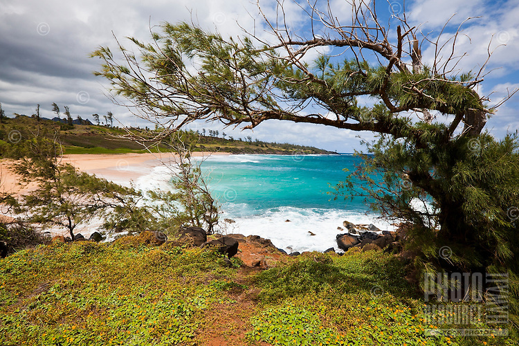 The view of a beach on the east side of Kauai