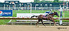 Brand New Moves winning at Delaware Park on 8/8/13