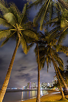 A view of Waikiki at night from a grove of palm trees at Kuhi'o Beach (or The Ponds), Honolulu, O'ahu.