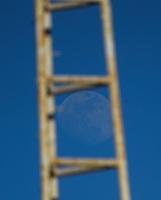 Luna.<br />  7mo. juego de beisbol de la serie final entre Mayos de Navojoa vs Tomateros de Culiacan celebrado en Estadio Manuel Ciclon  Echeverria. Temporada 2018 de la Liga Mexicana del Pacifico. Navojoa Sonora a  28enero 2018.  <br /> (Foto:Luis Gutierrez/NortePhoto.com)