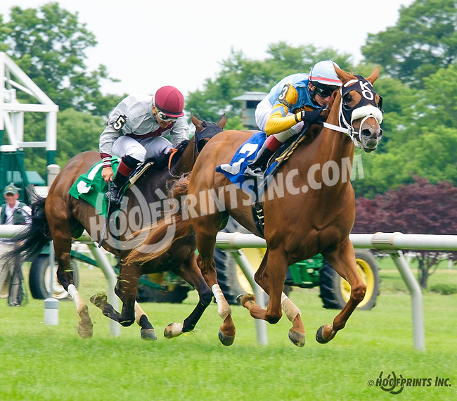 Lilies and Roses winning at Delaware Park on 6/15/16