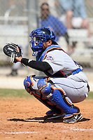 March 19, 2010:  Catcher Francisco Pena (34) of the New York Mets organization during Spring Training at the Roger Dean Stadium Complex in Jupiter, FL.  Photo By Mike Janes/Four Seam Images