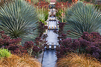Yucca rigida and Euphorbia 'Nothowlee' (Blackbird Spurge) - The Celebration Garden drought tolerant summer-dry formal design with water rill between matching double perennial borders; Huntington Botanic Garden