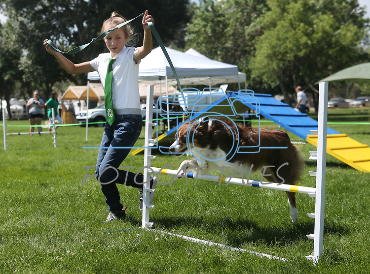 4-H member Karlie LaFever, of Reno, and her dog Bailey run the dog agility course at the Carson City Fair at Fuji Park on Tuesday, July 25, 2017. For more information about the fair, which run through Sunday, go to carsoncitynvfair.com.<br />