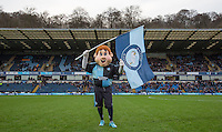 Bodger the cLUB mascot flies the flag during the Sky Bet League 2 match between Wycombe Wanderers and Crawley Town at Adams Park, High Wycombe, England on 28 December 2015. Photo by Andy Rowland / PRiME Media Images
