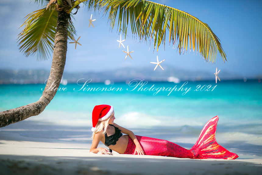 Christmas mermaid<br />