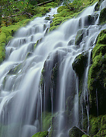 ORCAC_034 - USA, Oregon, Willamette National Forest, Three Sisters Wilderness, Upper Proxy Falls and lush green moss.