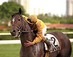 Famous Thoroughbreds