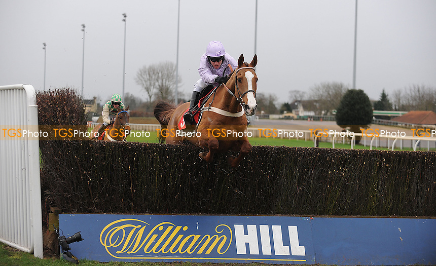Tetlami ridden by Barry Garaghty jumps the last and goes on to win the williamhill.com Novices´ Chase Cl2  - Horse Racing at Kempton Park Racecourse - 12/01/2013 - MANDATORY CREDIT: Martin Dalton/TGSPHOTO - Self billing applies where appropriate - 0845 094 6026 - contact@tgsphoto.co.uk - NO UNPAID USE.