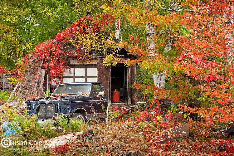 Fall foliage in Magalloway Plantation, NH, USA