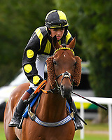 Air of York ridden by Arabella Tucker goes down to the start  of The Gift Of Sight Handicap  during Evening Racing at Salisbury Racecourse on 3rd September 2019