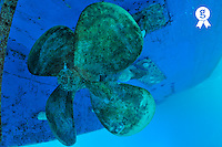 Ship propeller and hull, underwater view, Red Sea, Egypt (Licence this image exclusively with Getty: http://www.gettyimages.com/detail/82406604 )